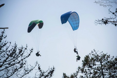 The only paragliding competition close to the ground!